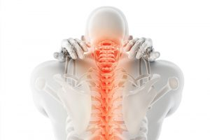 Spinal back pain skeleton graphic