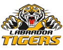 Labrador Tigers